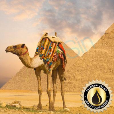 Pyramid (Dromedary) Inawera